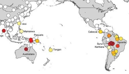 Генетические связи между жителями Южной Америки и Австралии (Skoglund et al.)