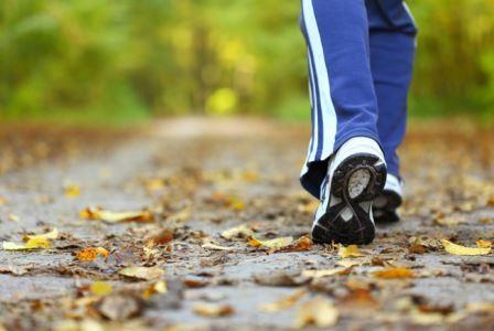 Гулять — полезно, выяснили ученые