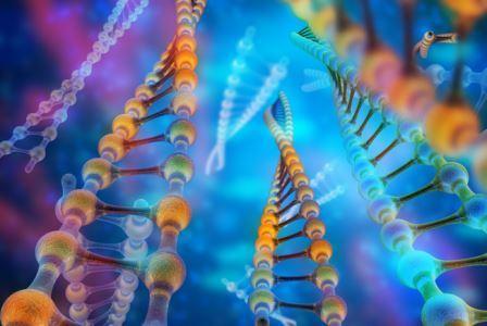 На самых ранних этапах зарождения жизни на Земле наследственную информацию могли хранить и передавать молекулы РНК