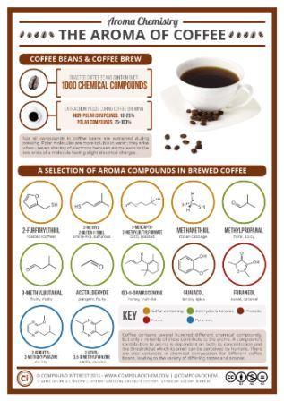 Взаимодействия сахароза-кофеин влияют на вкус кофе