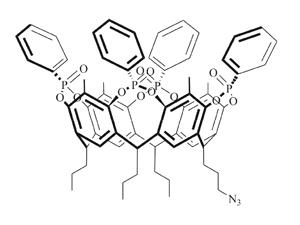 Бусины, покрытые кавитандом, способны адсорбировать саркозин из образцов мочи.