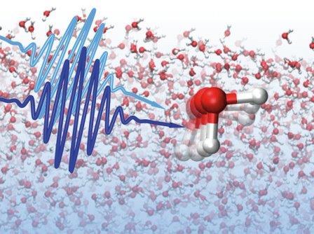 Так художник представил себе молекулы воды, соединенные водородными связями
