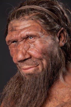 Предки людей и неандертальцев разделились неожиданно рано