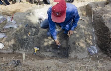 На Аляске обнаружены останки нового подвида динозавров