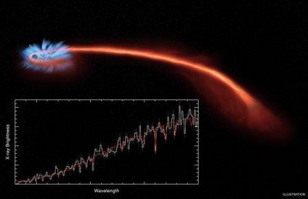 Черная дыра разрушает звезду