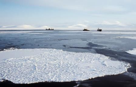 Северный морской путь может оттаять к концу века из-за глобального потепления