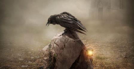 Вороны оплакивают своих мертвых