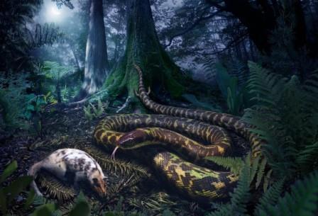 Еще в раннем меловом периоде у змей сохранялись небольшие конечности