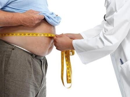 Разнообразное питание ведет к ожирению