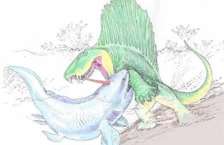 Битва между диметродоном и акулой рода Xenacanthus