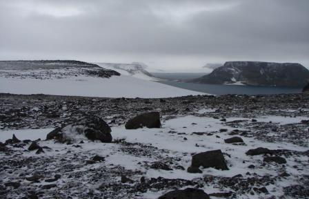 Археологи нашли в Арктике следы древних охотников, питавшихся белыми медведями