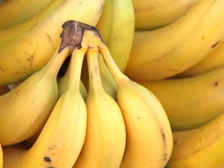 Грибковая болезнь может уничтожить все бананы