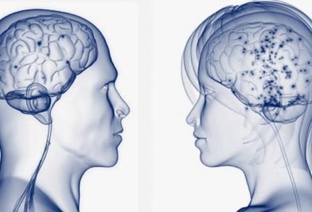 Мозг мужчины лучше «оптимизирован» к ориентации в пространстве