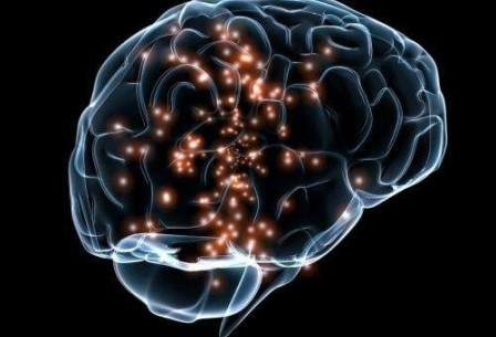 Ученые отметили, что гены, предположительно формирующие интеллект у здорового человека, были ответственны за нарушение когнитивной способности и эпилепсии у больных людей