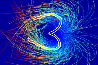 Ученые истолковали отказ сперматозоидов плыть налево