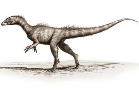 Dracoraptor hanigani