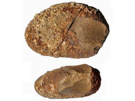 Чопперы, найденные в Монте-Верде