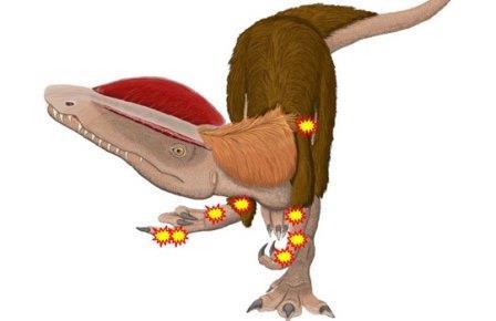 Дилофозавр-инвалид страдал от восьми болезней сразу