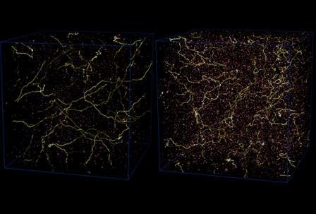 Струны во Вселенной на ранних этапах ее развития