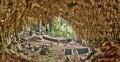 """Пещера Лянг-Буа, где были найдены останки """"хоббитов"""" в 2003 году"""
