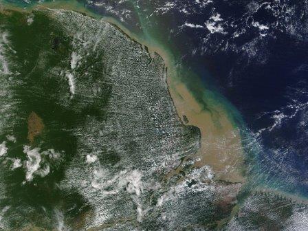 Огромный коралловый риф обнаружен в устье Амазонки