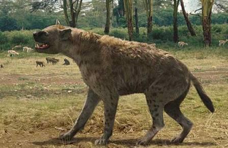 Гигантская гиена