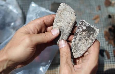 Древнейший каменный топор был изготовлен в Австралии 49 тыс. лет назад