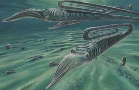 От мел-палеогенового вымирания не удалось бы спастись в Антарктике