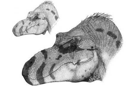 Морда тираннозавра могла выглядеть совсем непривычно
