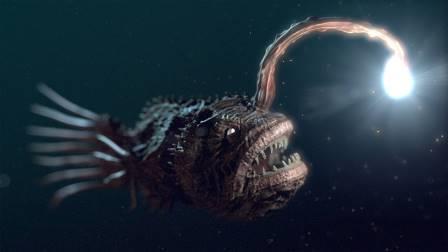 Генетики доказали древность биолюминесценции у рыб