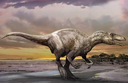 Murusraptor barrosaensis