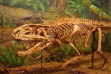 Крупные динозавры оказались склонны к воркованию