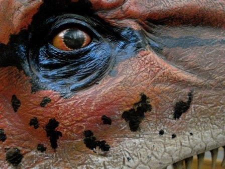 Динозавры видели красный цвет так же, как черепахи и птицы
