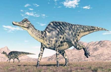 Секрет эволюционного успеха гадрозавров крылся в их челюстях