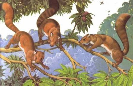 Индийские шахтеры раскопали самого примитивного примата