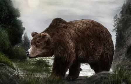 Пещерные медведи вымерли из-за вегетарианской диеты