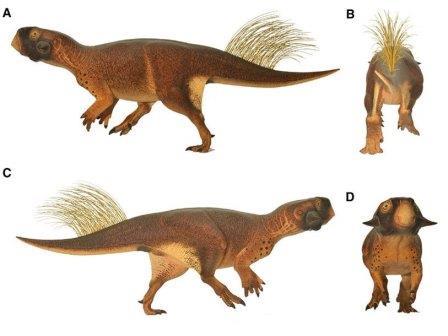 Реконструкция окраски пситтакозавра