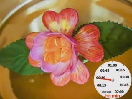 Искусственный цветок из программируемого гидрогеля расцвел в лаборатории
