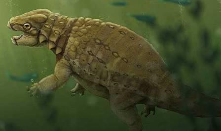 Панцирные динозавры питались рыбой