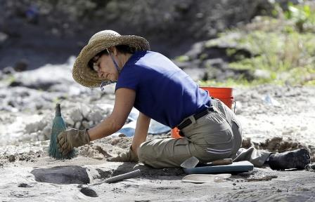 В Аргентине найдены останки птерозавра возрастом 170 млн лет