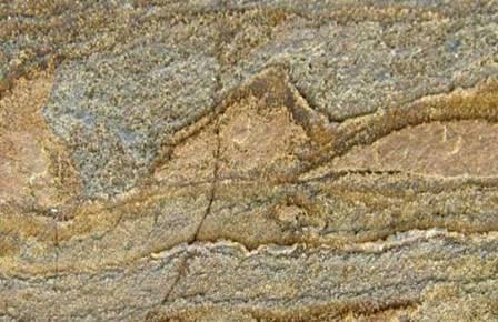 Самые древние организмы Земли заставили палеонтологов присмотреться к Марсу