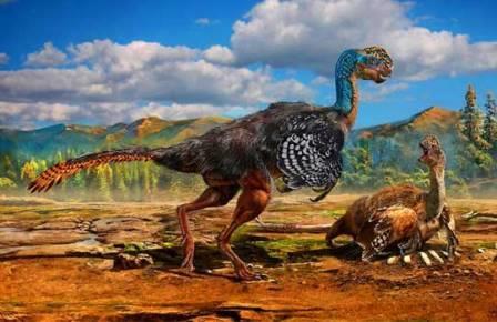 Родственный Avimimus динозавр Huanansaurus