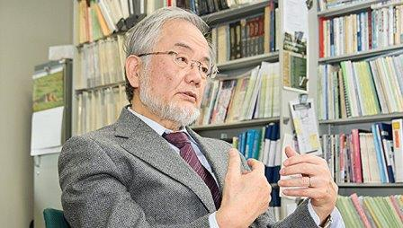 Профессор Технологического университета Токио Йосинори Осуми