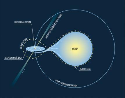 Двойная система с обычной звездой, заполнившей свою полость Роша