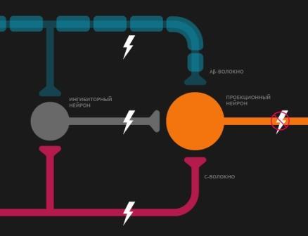 Нейронные транзисторы