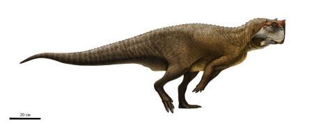 Пситтакозавр сибирский