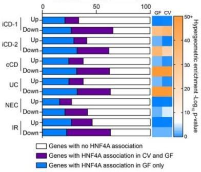Число генов, ассоциирующихся с HNF4A