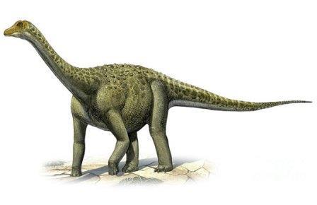 Tengrisaurus starkovi