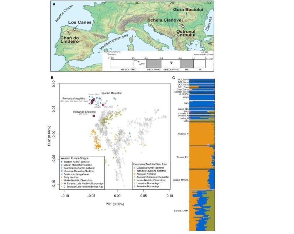 Карта и данные генетического анализа