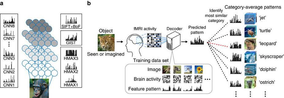 Порядок обучения и тестирования глубокой нейросети